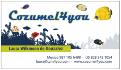 Welcome to the New Cozumel 4 You