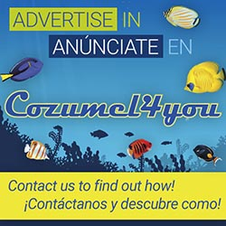 Advertise in Cozumel 4 YOu