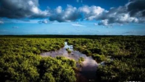 Tourism Quintana Roo