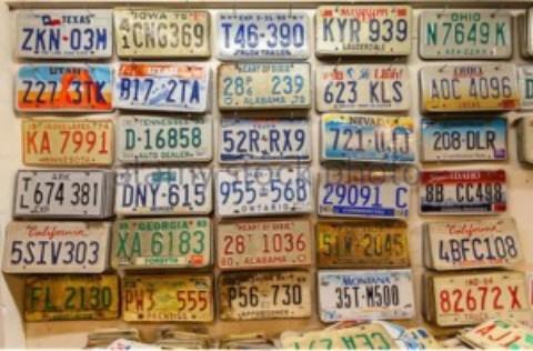 Cozumel License Plates