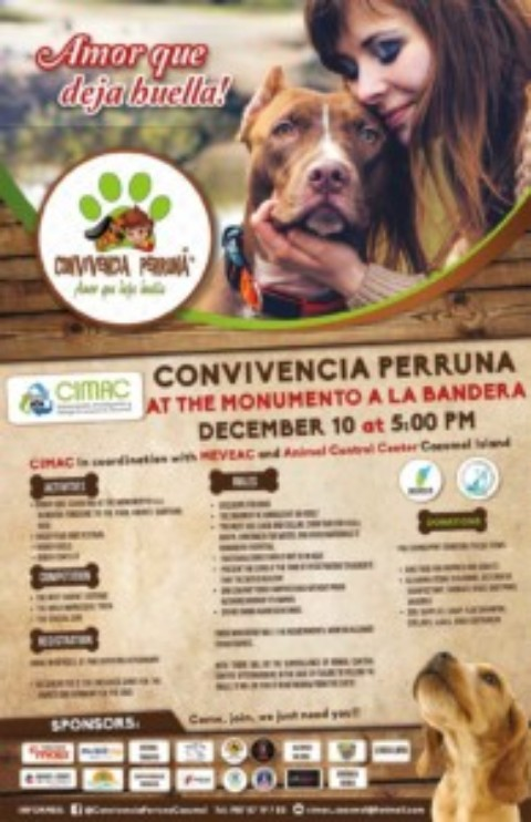 Dog Walk, Rally & Fundraiser