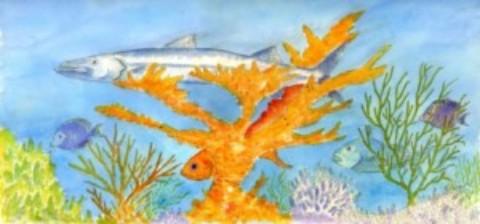 Art in Cozumel: Island Artists Profiled
