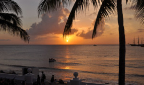 Upcoming, Continuing Events, Snippets & Cozumel Classifieds