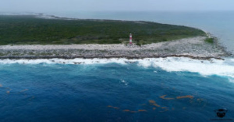 Cozumel Without Cruise Ships