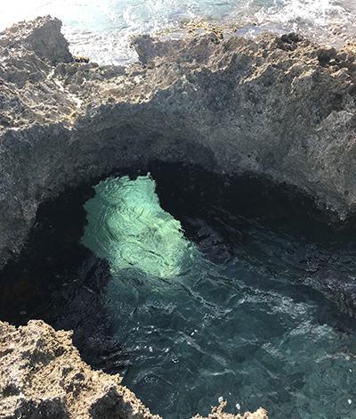 Cozumel Reef