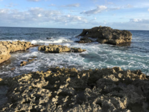 Cozumel Video