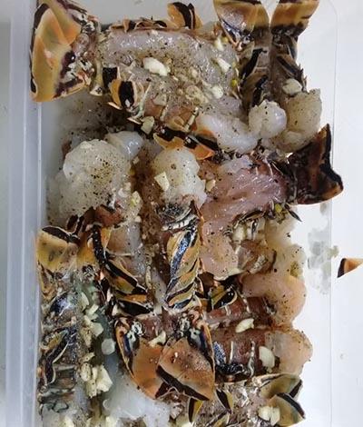 Cozumel Lobsters