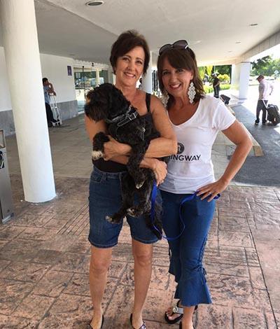 Adopting a Cozumel Dog