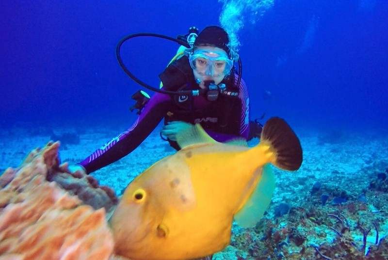 CaribbeanExpeditions4