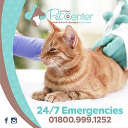 Pet Center Cozumel