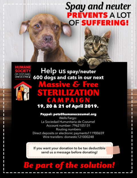 HSCI Announces 2019 Sterilization Campaign