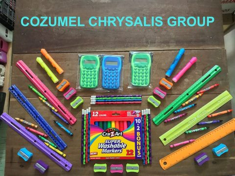 Cozumel Chrysalis Group On-Line Auction
