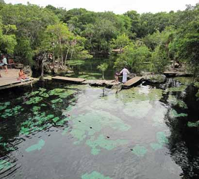 Cenotes Cozumel