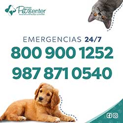 Pet Center Cozumel