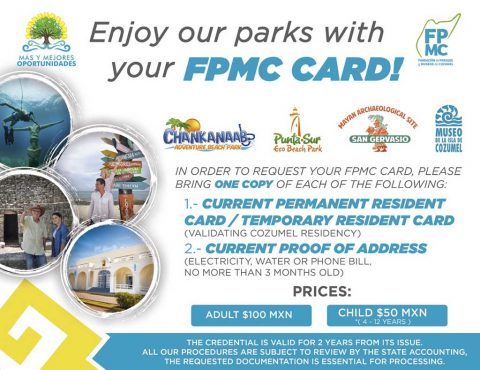 FPMC Card
