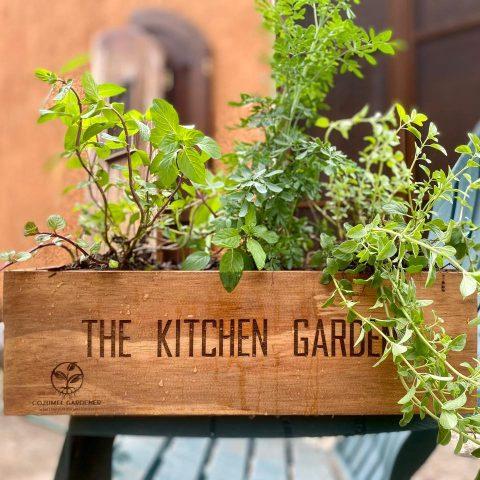 Cozumel Gardener