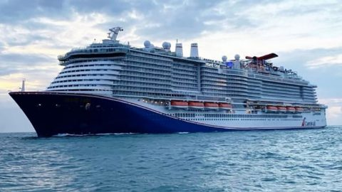 Cozumel Cruise Ship Arrivals Mardi Gras